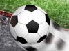 Virtuelle Fußball-Cup 2010