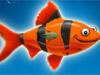 Franky el pez