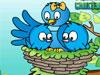 Cara 2 Nest