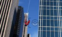 Spiderman Photohunt