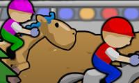 Pelatihan kuda ras