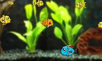 Kleine vissen ontsnappen