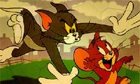 القط و الفأر