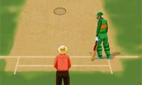 Мира по крикету