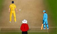 Wereld Cricket 2011