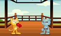 Guerras de gato
