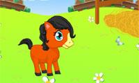 Cute Pony tempat penitipan anak