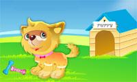 Anjing anjing lucu