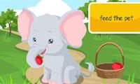 Elefant-Pflege