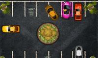 Blonde Parking Havoc