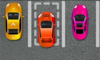 Meesterschap parkeren