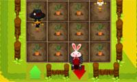 Bunny op boerderij
